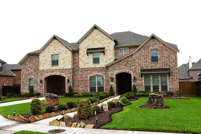 910 Springhaven Court, Katy, TX 77494 (MLS #58499989) :: Krueger Real Estate