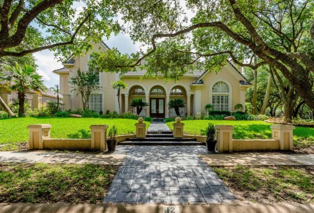12 Massey Row, Sugar Land, TX 77479 (MLS #58538516) :: Texas Home Shop Realty