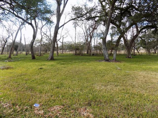 10-13 County Road 161 Shilo Loop, Cedar Lane, TX 77414 (MLS #58556725) :: Green Residential