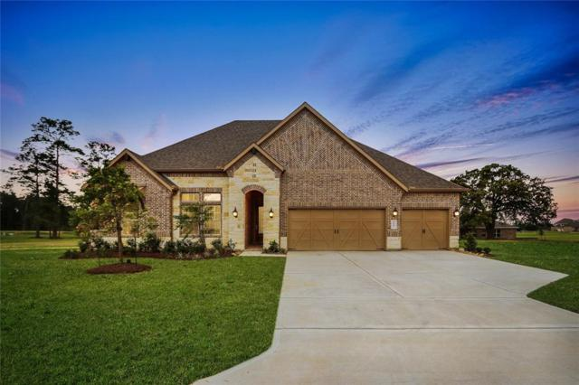 6007 Leeward Island Drive, Conroe, TX 77304 (MLS #58572091) :: The SOLD by George Team