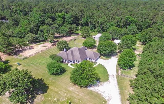 8712 Grand Lake Estates Drive, Montgomery, TX 77316 (MLS #58572167) :: Giorgi Real Estate Group