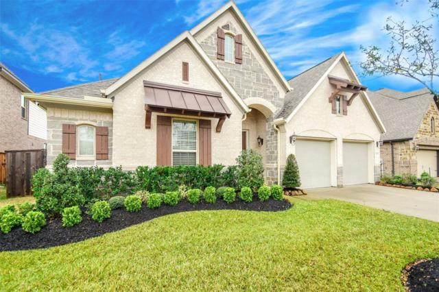 3610 Trinity Rose Lane, Pearland, TX 77584 (MLS #58623265) :: The SOLD by George Team