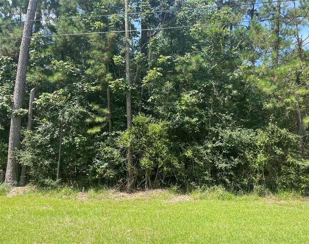 Lot 19 Clear Creek Forest 11, Magnolia, TX 77355 (MLS #58642419) :: Lerner Realty Solutions