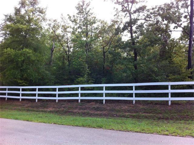 1 Branns Fern, Conroe, TX 77304 (MLS #58648072) :: Giorgi Real Estate Group