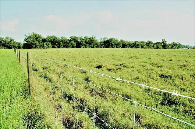 00 CR 103 County Rd 103, Boiling, TX 77420 (MLS #58677684) :: Green Residential
