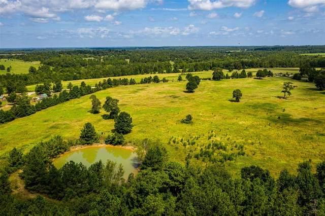 361 Robinson Creek, Huntsville, TX 77340 (MLS #58784325) :: Ellison Real Estate Team
