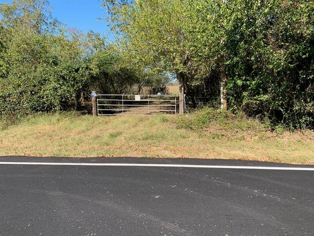 31096 Rochen, Waller, TX 77484 (MLS #58844911) :: The SOLD by George Team