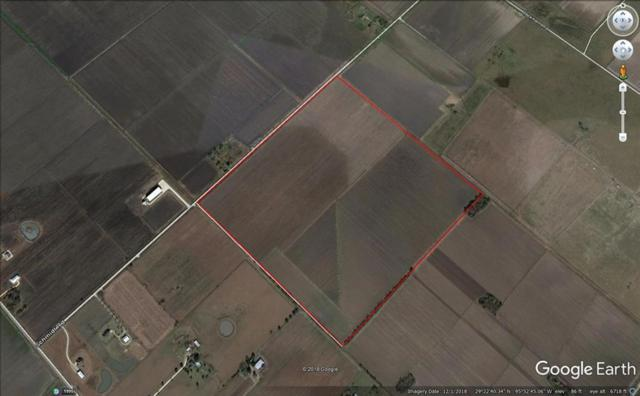 000 Mayberry Road, Needville, TX 77461 (MLS #58848413) :: Texas Home Shop Realty
