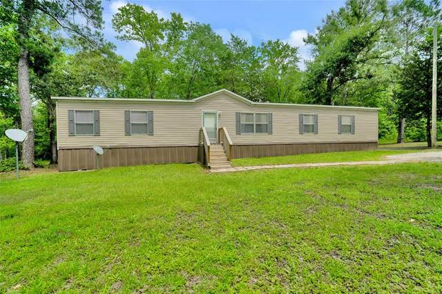 22 Pine Street, New Waverly, TX 77358 (MLS #5889882) :: Connect Realty