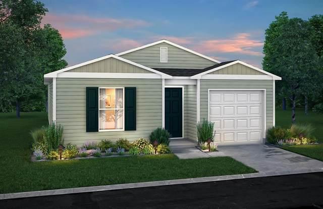 175 Mesquite, Livingston, TX 77334 (MLS #58921276) :: Ellison Real Estate Team