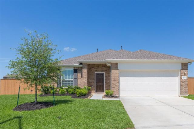 12731 Beacon Cove Drive, Texas City, TX 77568 (MLS #58944248) :: Texas Home Shop Realty
