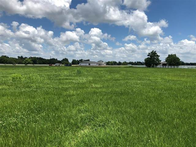 3218 Pearce Drive, Rosharon, TX 77583 (MLS #5898508) :: The SOLD by George Team
