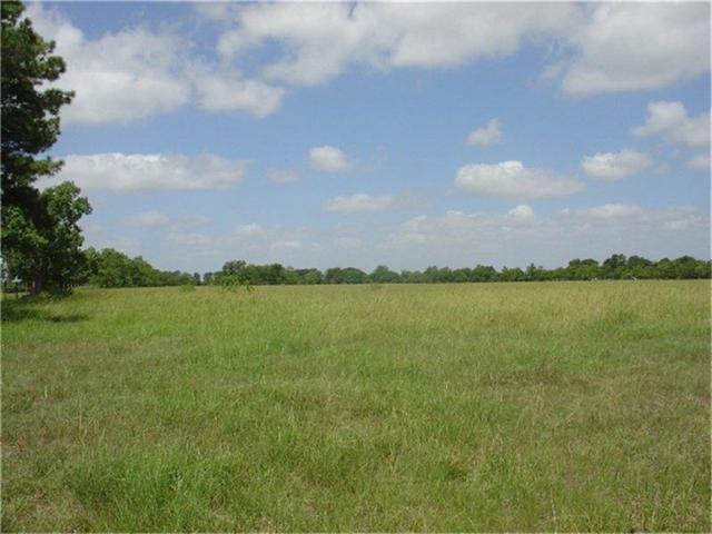 21643 Binford Road, Waller, TX 77484 (MLS #59074043) :: Magnolia Realty