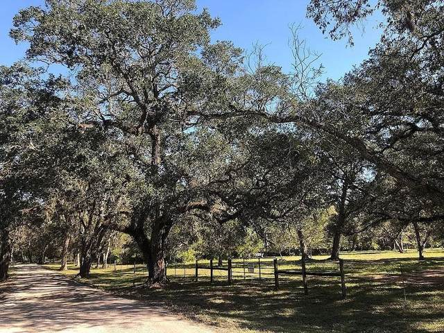 0 S Brazos River Private Rd End Of Cr 373 Road S, Lake Jackson, TX 77566 (MLS #59121694) :: The Wendy Sherman Team
