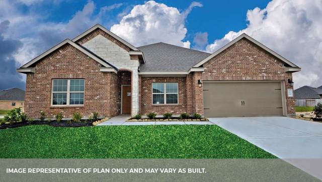 6317 Firewood Drive, League City, TX 77573 (MLS #59138777) :: The Sold By Valdez Team