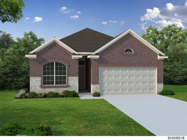 8206 Silverspot Lane, Missouri City, TX 77459 (MLS #59177819) :: Magnolia Realty