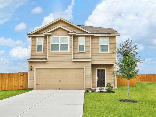 8231 Starfish Road, Cove, TX 77523 (MLS #59181929) :: Christy Buck Team