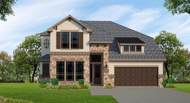 38 Botanical Vista Drive, The Woodlands, TX 77375 (MLS #59193812) :: Giorgi Real Estate Group