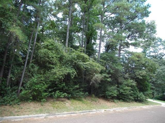 LOT 22&23 Brazos Dr, Willis, TX 77378 (MLS #59217205) :: The Home Branch