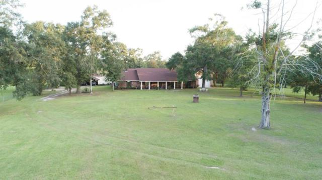 7564 Biscamp Road, Silsbee, TX 77656 (MLS #59347361) :: The Bly Team