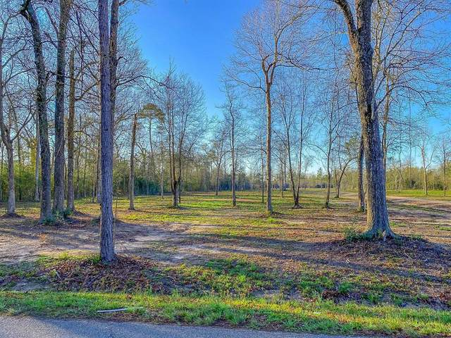 Tr C County Road 2216, Cleveland, TX 77327 (MLS #59370608) :: The SOLD by George Team