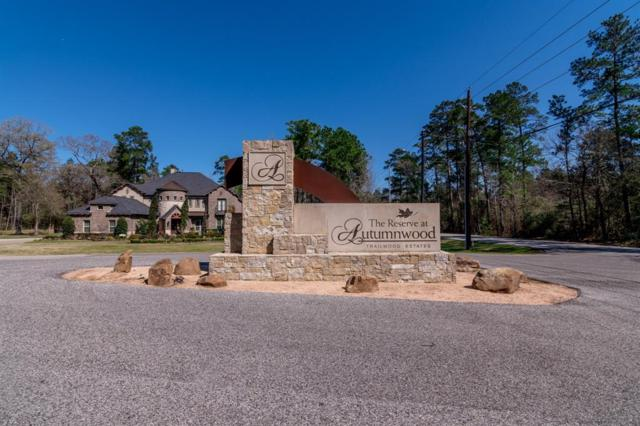 1251 Trailwood Estates Drive, Magnolia, TX 77354 (MLS #59415902) :: The Freund Group