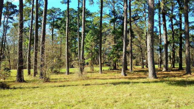 TBD Breakwater Drive, Coldspring, TX 77331 (MLS #59439169) :: Texas Home Shop Realty