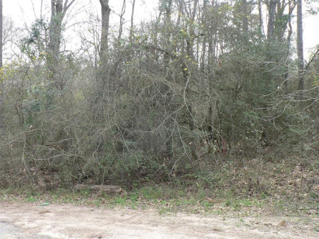 13231 Huck Finn, Willis, TX 77318 (MLS #59450819) :: The Home Branch