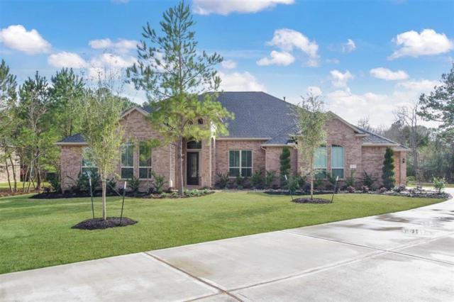 12927 Mossy Shore, Tomball, TX 77375 (MLS #59456151) :: The Bly Team