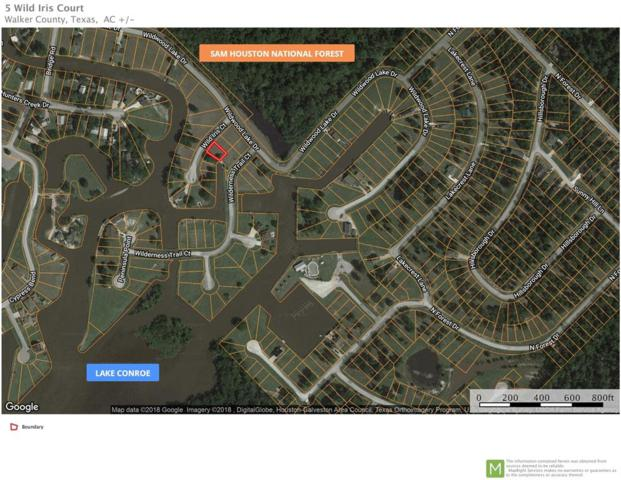 5 Wild Iris Court, Huntsville, TX 77340 (MLS #59480911) :: The SOLD by George Team