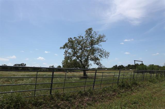 000 Happy Hollow Rd, Brenham, WA 77833 (MLS #59513341) :: Krueger Real Estate