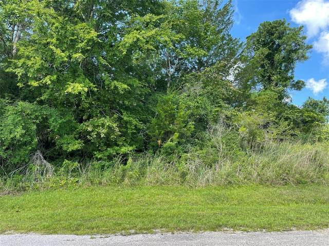69 Piping Rock Place, Coldspring, TX 77331 (MLS #59563536) :: Lerner Realty Solutions