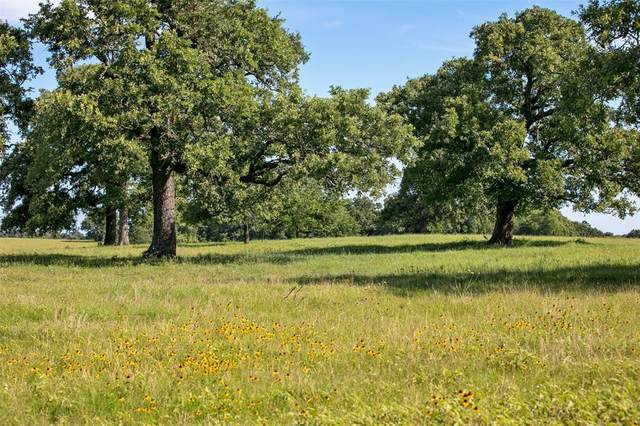 TBD (+/-157 acres) Fm 908, Caldwell, TX 77836 (MLS #59568776) :: Texas Home Shop Realty