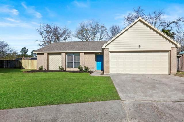 24014 Pea Ridge Drive, Spring, TX 77373 (MLS #59601061) :: The Heyl Group at Keller Williams