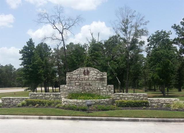 2144 Pacific Loon Lane, Conroe, TX 77385 (MLS #59615170) :: Giorgi Real Estate Group