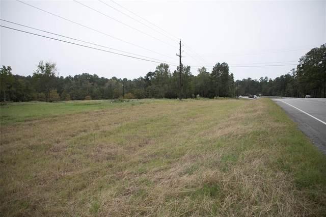 1331 Mccaleb Road, Montgomery, TX 77316 (MLS #59618904) :: Area Pro Group Real Estate, LLC