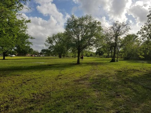 6419 County Road 168, Alvin, TX 77511 (MLS #59630530) :: The Stanfield Team | Stanfield Properties