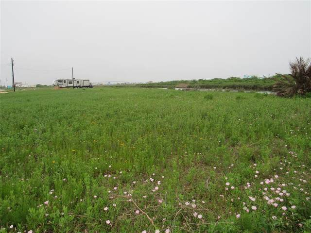 2046 County Road 204 Dolphin Way, Sargent, TX 77414 (MLS #59641250) :: The Freund Group