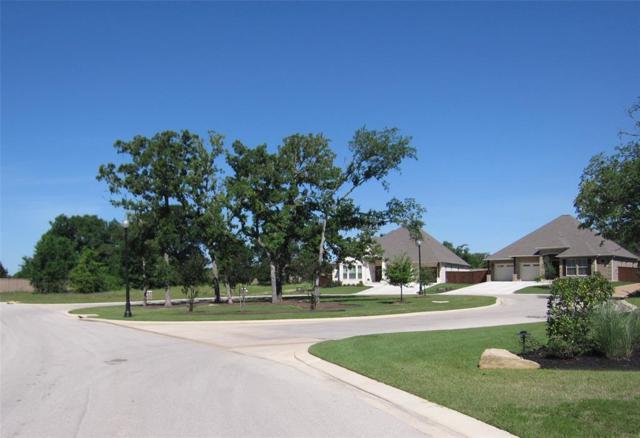 2950 Blue Belle Drive, Bryan, TX 77807 (MLS #59661069) :: Ellison Real Estate Team