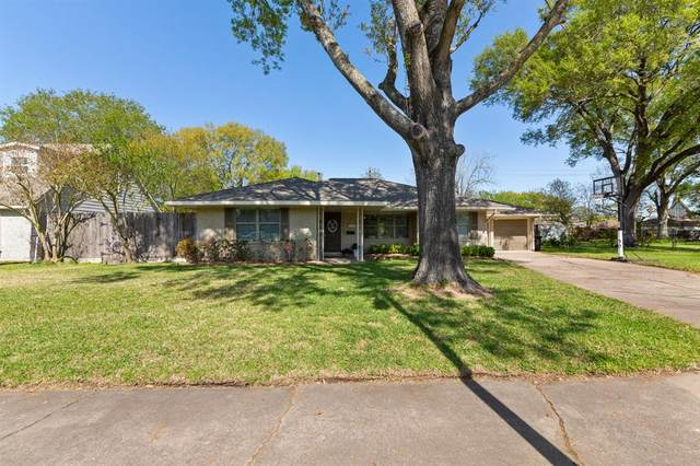 10806 Endicott Lane, Houston, TX 77035 (MLS #59720841) :: Homemax Properties
