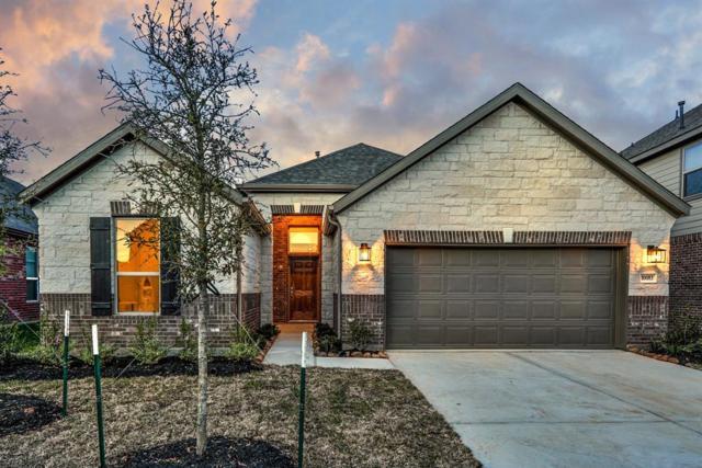 10083 Cimarron Canyon Lane, Magnolia, TX 77354 (MLS #59721708) :: Krueger Real Estate