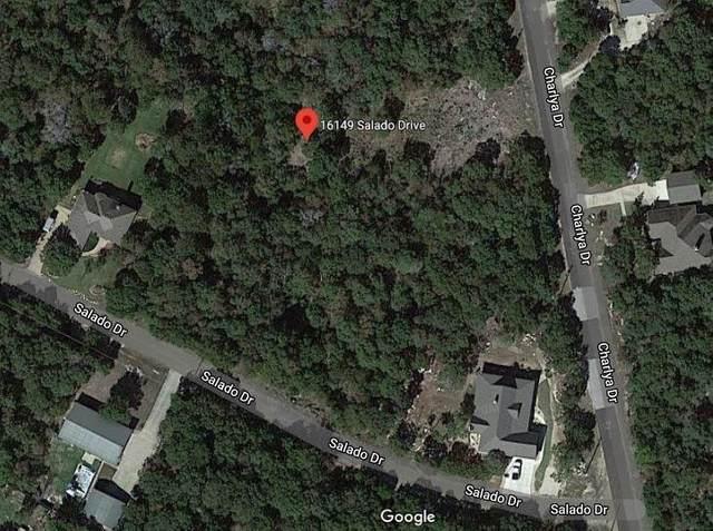 16149 Salado Drive, Temple, TX 76502 (MLS #59867464) :: Ellison Real Estate Team