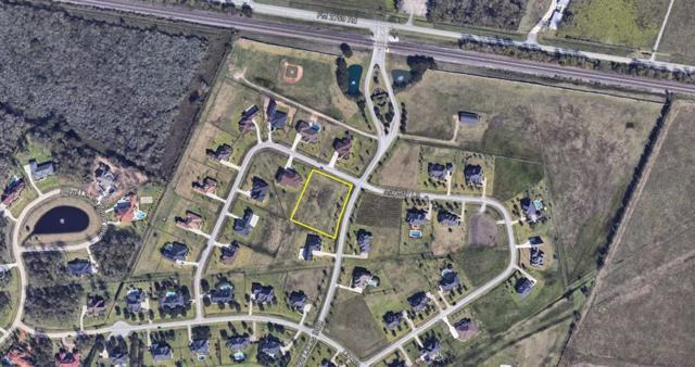 202 Royal Lakes Blvd Boulevard, Richmond, TX 77469 (MLS #59879610) :: The SOLD by George Team