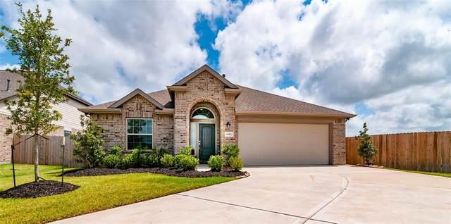 6740 Coral Bells Lane, Dickinson, TX 77539 (MLS #59912215) :: TEXdot Realtors, Inc.