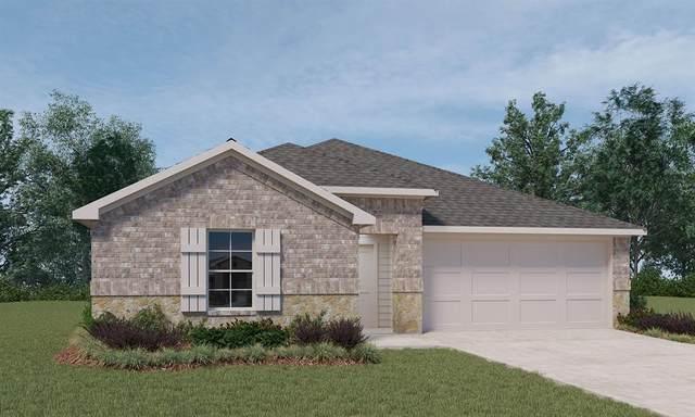 40377 Blossom Valley Lane, Magnolia, TX 77354 (MLS #59936686) :: Michele Harmon Team