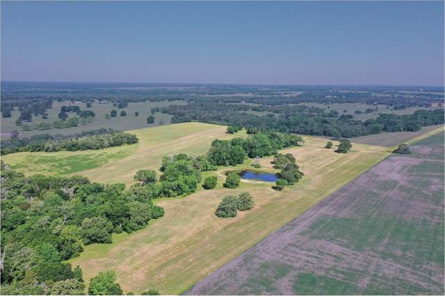 TBD-01 Friendship Cemetery Road, Paige, TX 78659 (MLS #59969832) :: The Home Branch