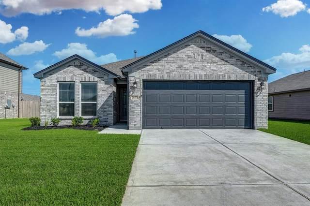 2635 Ridgeback Drive, Rosenberg, TX 77471 (MLS #60027534) :: The SOLD by George Team