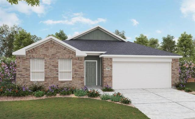 23211 Briarstone Harbor Trail, Katy, TX 77493 (MLS #60047044) :: Texas Home Shop Realty