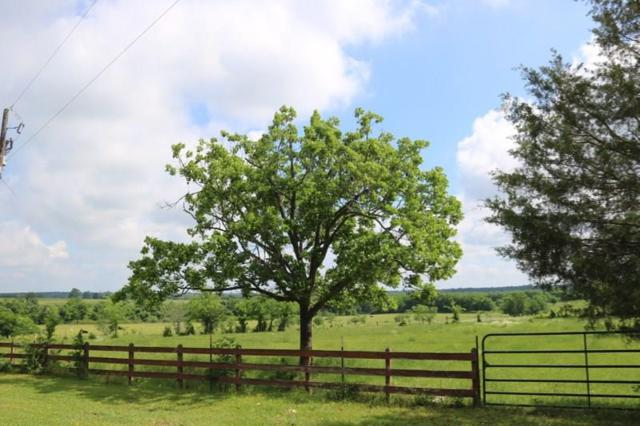 TBD 34.7 Acres Riva  Fm 149 E, Anderson, TX 77830 (MLS #60051652) :: Texas Home Shop Realty