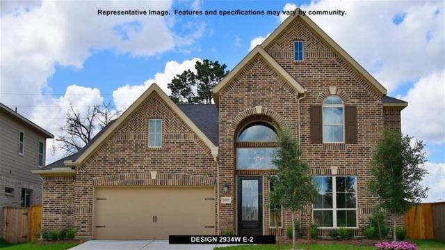 211 Painted Trillium Drive, Conroe, TX 77304 (MLS #60076721) :: Christy Buck Team